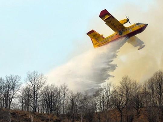 Двум студентам выписали штраф на 13,5 миллиона евро каждому из-за лесного пожара, вспыхнувшего на их пикнике