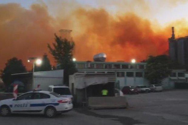 На азотному заводі у Туреччині пролунав вибух: відео
